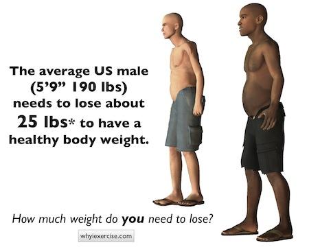 average body fat for women № 79613