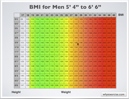 bmi chart for men. Is the ody mass index the