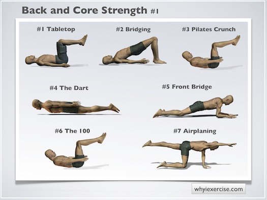Back strengthening exercises: Thumbnails