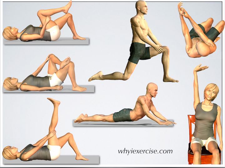 back stretching exercises improve flexibility relieve tension