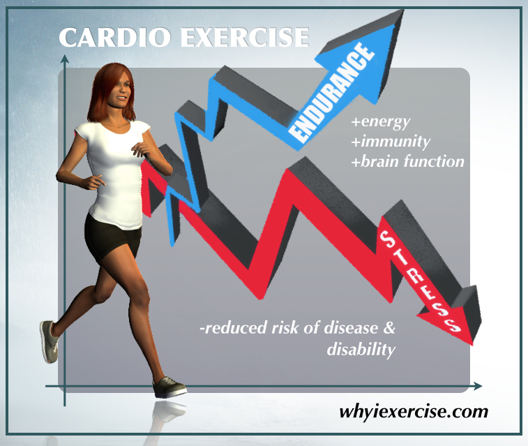 The Benefits Of Aerobic Exercise