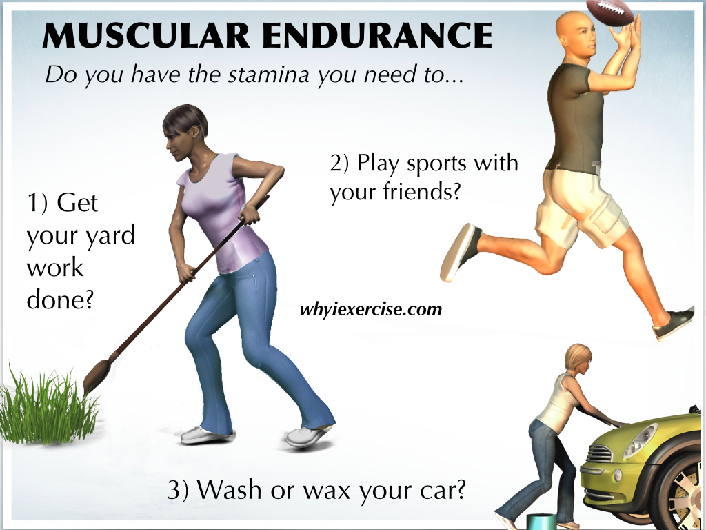 Definition Of Physical Fitness Measure Your Strength Endurance