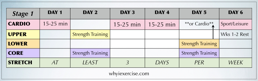 This Workout Schedule Is A Match For People Who Are New To Exercise Age 55 Or Just Returning After Being Inactive 4 Weeks More