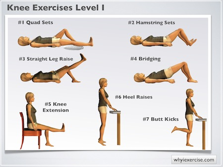 Quadriceps Strengthening Exercise http://www.whyiexercise.com/knee-exercises.html