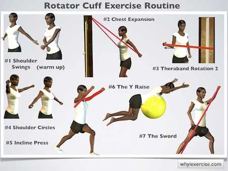 rotator cuff exercise machine