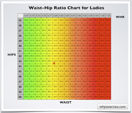 While the average man is just below this threshold -- with a waist measurement of inches -- the average women has a waist size of inches, which means she Founded: Jun 17,