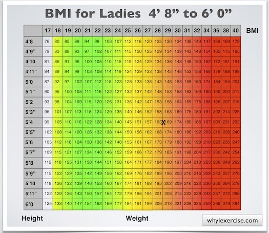 Body Mass Index With Health Risk Charts And Illustrations