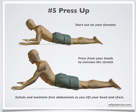 Exercises For Low Back Pain Detailed Easy To Follow