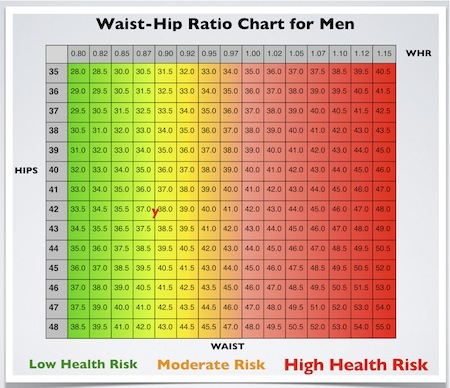Bodies come in all shapes and sizes, so you won't find a chart that lists standard waist and hip size to go with each height and weight. You will, however, find a healthy weight range for each height, a healthy waist size range for a given hip size, and a healthy waist size range for a specific gtacashbank.gad: Jun 17,